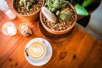 Cappuccino Vilter