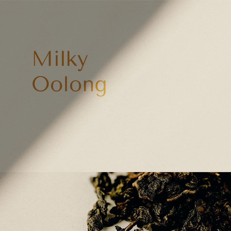 Milky oolong thee Vilter